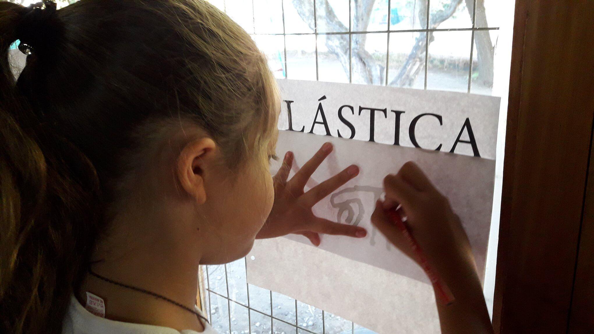 plastica_caratulas_2019